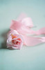 Pink (borealnz) Tags: rose pink flower ribbon pretty soft