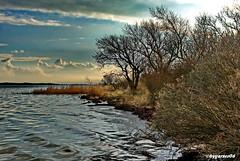 Wieker Bodden (garzer06) Tags: wolken deutschland dranske mecklenburgvorpommern landschaftsfoto wellen landscapephotography landschaftsbild inselrügen naturphotography insel naturfoto rügen landschaftsfotografie