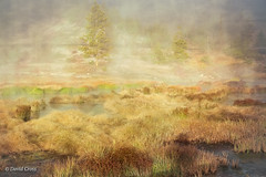 Thermal Landscape (HSS) (buffdawgus) Tags: canonef24105mmf4lisusm lightroom6 westernstatesroadtrip yellowstonenationalpark landscape topazsw canon5dmarkiii wyoming