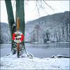 Life Buoy - Velvia 100 exp* (magnus.joensson) Tags: sweden swedish skåne skäralid snow winter december rolleiflex 35 fuji velvia 100 6x6 exp2007 zeiss 75mm tessar epson v800 scan