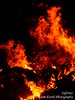 Inferno (liamearth) Tags: furnace burning warmth white black blackbackground smoke wood texture earth fire flame inferno night campfire bonfire hot orange yellow red