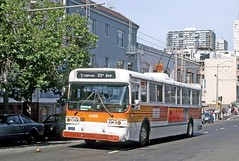 San Francisco Muni: 5088 westbound on Sacramento Street, Route 1 (Mega Anorak) Tags: bus flyer e800 trolleybus sanfrancisco muni line1