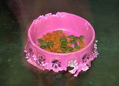 hersey's food bowl (the foreign photographer - ฝรั่งถ่) Tags: food bowl hersey our house bangkhen bangkok thailand nikon