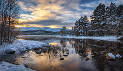 Loch Morlich sunrise (jasty78) Tags: lochmorlich cairngorms cairngormmountain snow loch trees winter scotland nikond7200 tokina1116mm twb