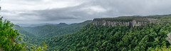 Canyon Lookout panorama (palbion) Tags: springbrook queensland australia au