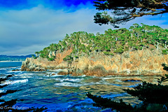 IMG_3481-2 (CornellBurgessphotography) Tags: seascapes bigsur pointlobos carmelbay california pacificocean montereybay cornellburgess