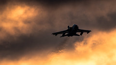 Twilight Tornado (Steve Cooke-SRAviation) Tags: 15sqn panavia raf 500mm tornadogr4 stevecooke marham lightningll tornado sraviation 31sqn canon 100400mm 5d4 tonka