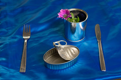 Empty sardine tin can with nothing to eat together a fork, knife and pot with a purple flower and green leaves on the side on blue Background (TodoPOI) Tags: aluminum background backgrounds box can canned cannedfood conceptual conserve container diet eatable eaten empty fish flower food foodcan gray hunger hungry industry inspiration isolated metal metallic nobody nutrition object objects open package packaging packed poor poverty preservation preserve product reflection refuse sardine sardinecan seafood silver steel storage tin topview unique