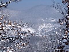 télutó a Veresvízen /  end of winter (debreczeniemoke) Tags: tél winter hó snow erdő forest hegy mountain völgy valley veresvíz nagybánya baiamare tájkép landscape olympusem5