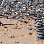 Pedras na praia thumbnail