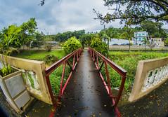 Bridge (Christian Cardoso.) Tags: hdr ps bridge fisheye 8mm sigma brasil landscape paisagem sorocaba piedade cidadedepiedade fine fineart