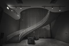 Art Institute Grand Staircase (Jovan Jimenez) Tags: art institute chicago sony a6500 zeiss touit 12mm nik collection silver efex pro 6500 architecture interior grand staircase distagon black white gray bw monochromatic monochrome alpha hdr touit2812
