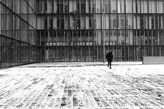 On the slippery boards (pascalcolin1) Tags: paris13 bnf homme man neige snow planches boards glissant slippery photoderue streetview urbanarte noiretblanc blackandwhite photopascalcolin 50mm canon50mm canon