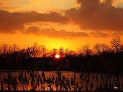 Sonnenuntergang über der Havel (Zwischenrast) Tags: horizont flus