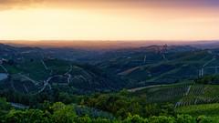 Hills of Serralunga (::YS::) Tags: yann savalle yasa sony alpha99 serralunga italy barolo hills landscape nature wild italia colines alba