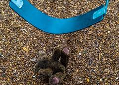 Forsaken Teddy (Beangrau12) Tags: dogwood2018 week8 creativeforsaken playground swing teddybear dirt bear abandon forgotten forsaken nikon3200 tamron1630mm