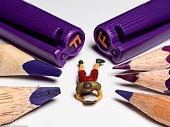 Macro Mondays #MyFavouriteRead - Die Farbe Lila (J.Weyerhäuser) Tags: myfavouriteread hmm lila die farbe macromondays alicewalker