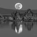 Mono Lake Moon Rise Black and White
