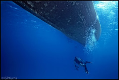 Grand Cayman Photography 1979 (Gary P Kurns Photography) Tags: caymandiver underwater nikon kodachrome64 hydro35 events grandcayman scuba film diving