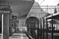 stresa settembre 2017 set 2 #9 (train_spotting) Tags: stresa mir mercitalia mercitaliarail trenitialiacargo ticargo divisionecargo tigre tigrone e652038 nikond7100