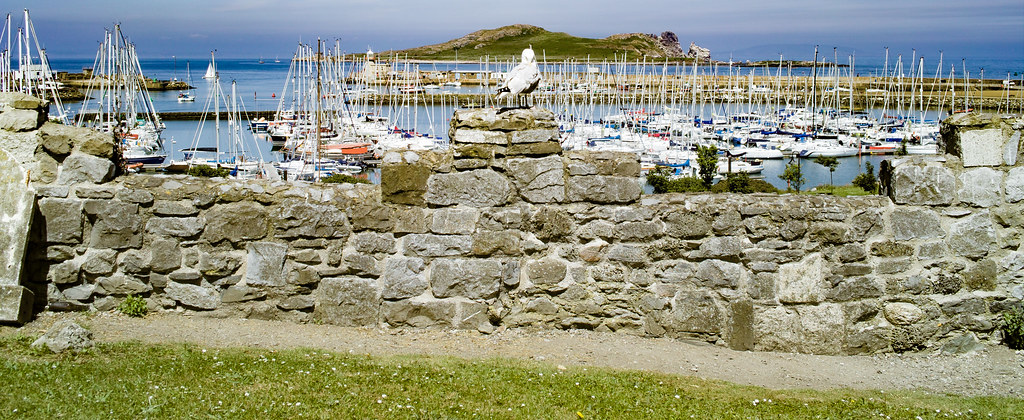 BACK IN JANUARY 2009 I VISITED THE OLD GRAVEYARD IN HOWTH [I HAD TO LEAVE BECAUSE I WAS ATTACKED BY GULLS]-135882