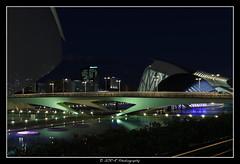 2018.02.02 Cité de la Science by night 28 (garyroustan) Tags: valence valencia night ciudad spain espana