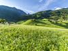 Happy_Stubai_Hotel_Hostel_Neustift_Stubai Valley_Tyrol_Austria_Outdoor_Summer_Meadow_(205) (marketing deluxe) Tags: stubai neustift tyrol austria happystubai vintage chilling hostel food action glacier