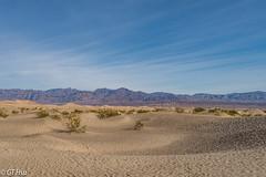 Mesquite Flat Dunes, Death Valley NP @ 2018.1.29 (viwes) Tags: deathvalley mesquiteflatdunes