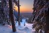 View from Puijo (Jyrki Salmi) Tags: jyrki salmi puijo kuopio finland winter evening sunset outdoor