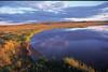 Tundra under the midnight sun (izurutoki) Tags: tundra midnightsun canadianarctic banks island northwestterritory arctic thomsen river muskox