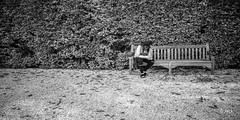 en passant par Vaux le Vicomte (Jack_from_Paris) Tags: jpr7589d800ebw nikon d800e nikkorafs24mmf14ged 24mm ligthroom capture nx2 wide angle prime lens noiretblanc bw monochrom vaux le vicomte france fouquet maincy verdure allée parc jardin regard banc bench check smartphone position promenade