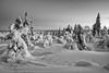 Snowpatterns och -sculptures (Fjällkantsbon) Tags: lappland sverige brännåker blåst evamårtensson skymning gitsfjälletsnaturreservat västerbottenslän se lapland sculptures wind skulpturer taiga