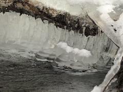 Holz, Eis, Wasser (michaelmueller410) Tags: eis ice snow schnee water wasser stream bach creek frozen gefroren harz söse blasen bubbles branch ast