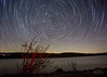 Dinosaur Point (theordinaryphotographer) Tags: startrails northstar polaris rotation night sky dinosaurpoint sanluisreservoir