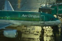 DSC_7438 (seustace2003) Tags: baile átha cliath ireland irlanda ierland irlande dublino dublin éire airport aerlingus