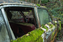 Jungle Cars (El Nigloo Loco) Tags: abandoned abandonné crazy exploration expérience enjoy erosion earth canon eos 700d rawshot rural randonnée rust mercedes volkswagen cadillac traction citroën travel textures tombeau symbol paysage cryptic voyage urbex urbanexploration urbandecay intothewild inthewoods iron overgrown ontheroad patrimoine photography perished stateofdecay decay disused dust death forgotten flowers graveyard gears heritage jardin leftbehind maschines wild countryside vehicules verdure valley backpack beautyofdecay nature natural cars oldtimers
