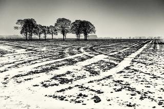 Land lines-