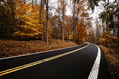 Catoctin Mountain Road [11.09.17] (Andrew H Wagner | AHWagner Photo) Tags: canon eos 5d3 1635l 1635mm f4 f4l is usm 5dmk3 5dmkiii 5dmarkiii 5dmark3 fall autumn nature landscape maryland md trees tree leaves orange red yellow outdoors explore exploration exploring hiking catoctinmountainpark catoctin catoctinmountain cunninghamfalls cunninghamfallsstatepark thurmont mountains valley road vanishingpoint