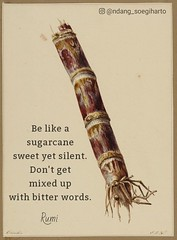 Be like a  sugarcane  sweet yet silent.  Don't get  mixed up  with bitter words. — Rumi (tjetjev_gorbatjev@yahoo.co.id) Tags: motivational words live fitnessmotivation poetry coffee mixedup bitter quotes quotation life sweet love silent inspirational enlightenment hustle wisdom travel