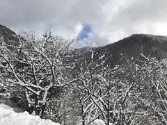 Relaxin' @Maguse Hot Springs, Japan (Phreddie) Tags: winter hotsprings onsen nature season image view snow relax happy nagano japan trip