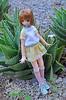 10 (Welt Der Puppen) Tags: dd dollfie dream dynamite dddy blythe blythes azone doll dolls collector anime leone akame ga kill pure neemo