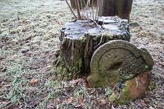 (S. Ruehlow) Tags: worms rheinlandpfalz judentum jüdischerfriedhof jewishcemetery jewish jüdisch cemetery graveyard friedhof heiligersand מצבה mazewa
