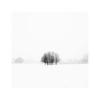 Sharnbrook (Chris-Green) Tags: snow sharnbrook england winter landscape olympus camerabag vsco