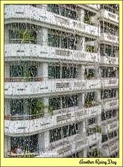 Another Rainy Day 02 (M.J.Woerner) Tags: rain storm thunderstorm window highrise unpleasant gloomy sad tristesse sadness dreariness drabness melancholy raindrops