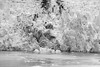 Sawyer Glacier at Tracy Arm Fjord in alaska panhandle (DigiDreamGrafix.com) Tags: arm glacier fjord sawyer tracy sawyerglacier tracyarmfjord blue water mountains clouds ice frozen floating alaska icebergs cruise nice beautiful dramatic lednik amazing ak canada rockies rocky