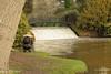 Photographer Sheffield Park Uckfield. (Meon Valley Photos.) Tags: sheffield park uckfield national trust ngc