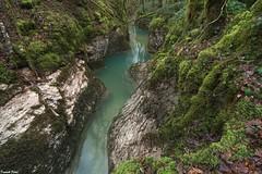 au milieu du Canyon de Château Renaud - Crouzet Migette (francky25) Tags: au milieu du canyon de château renaud crouzet migette franchecomté doubs ruisseau karst haut lison