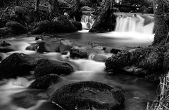 Gravity (Jamo Spingal : Thanks for 1M Views) Tags: sony a5000 multiframe bw