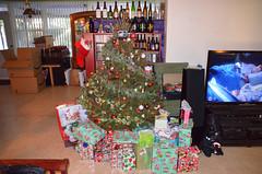 Christmas2016-0001 (awinner) Tags: 2016 christmas christmas2016 christmasmorning christmastree december2016 december25th2016 holidays home largoflorida presents