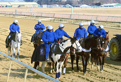 2018-02-02 (13) r3 pony people waiting for the 'start' at Laurel Park (JLeeFleenor) Tags: photos photography md marylandracing maryland laurelparkracecourse laurelpark laurelracecourse l leadrider horsepeople ponypeople blue